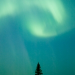Cupped Hands: Cupped northern lights.