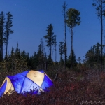 Tent at night in the woods: