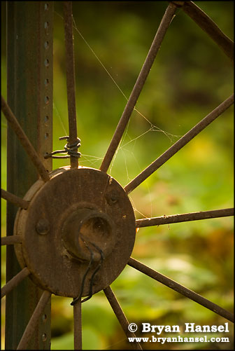 Fall Color and Rusted wheel