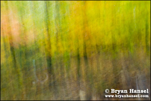 Fall Abstracts Two