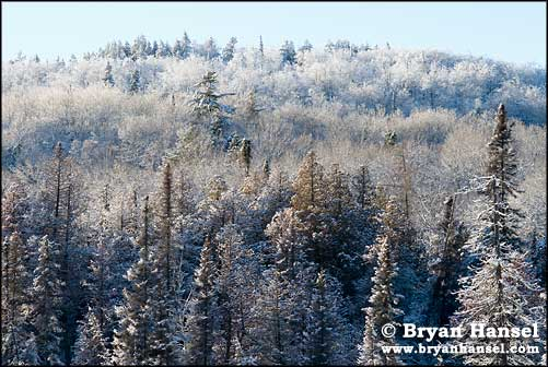 Winter Scene on Gunflint