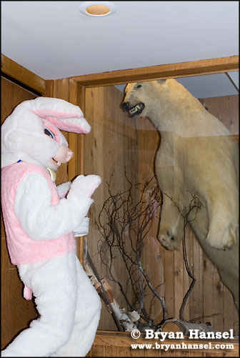 Easter Bunny and Polar Bear