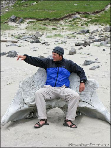 Bryan Hansel sitting in whale's skull