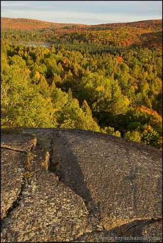 Oberg Mountain Fall Colors
