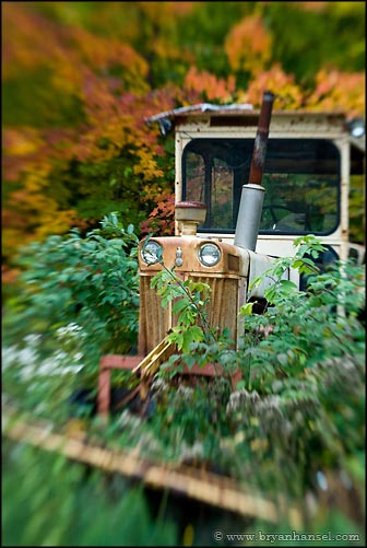 Plowing the Fall Color Away