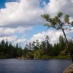 Pinhole camera photo of Gull Lake, BWCA