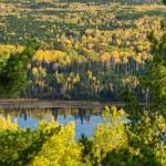 Grand Marais fall color.