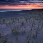 Sunrise in Grand Marais, MIchigan over beach grass and sand dunes.