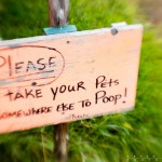 Don't poop on the lawn