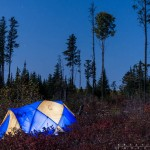 Tent at night in the woods