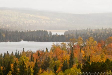 fall color on the Caribou trail