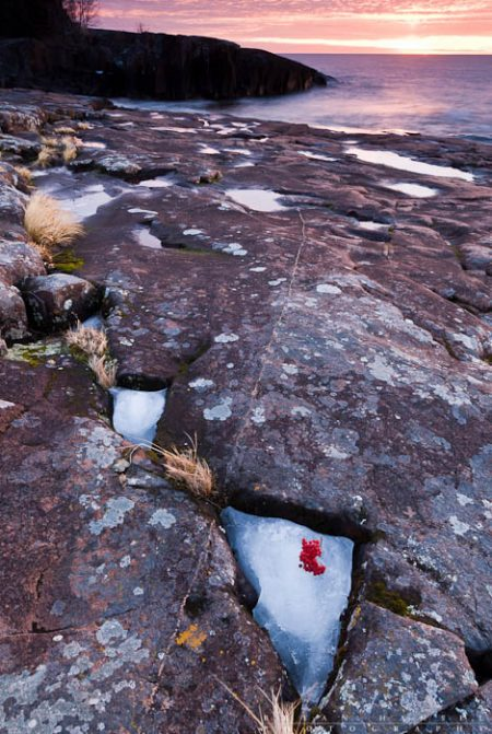 Mountain Ash Berry on Ice: Ice fills cracks on Artist's Point during sunrise.