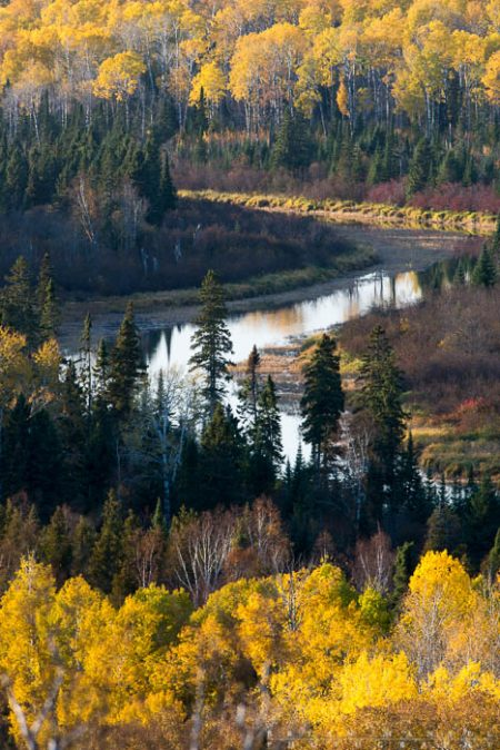 Pigeon River fall colors