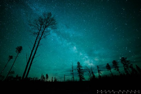 northern minnesota night sky, milky way and tree, cook county, mn