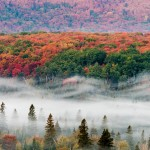fall colors and fog on Oberg Mountain, MN