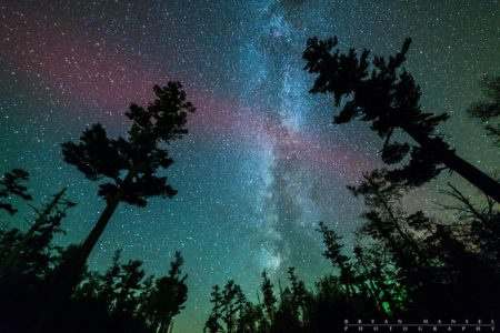 milky way, northern lights and white pines.