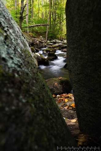 smoky mountains streams