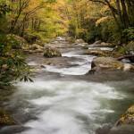 fall color around big creek