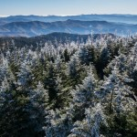 frost covered trees at sunrise in the smokies