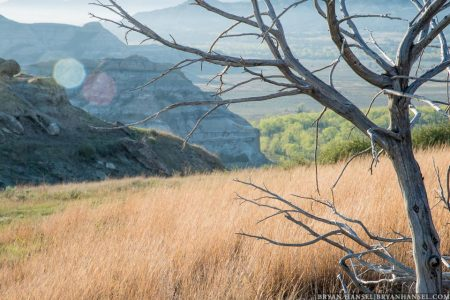 North unit in Theodore Roosevelt National Park