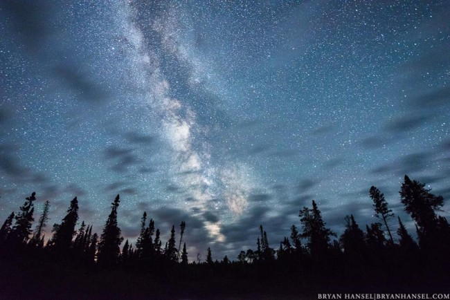 Milky Way above a treeline