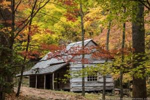 "Noah ""Bud"" Ogle cabin in the fall"