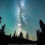 Milky Way above a boreal forest